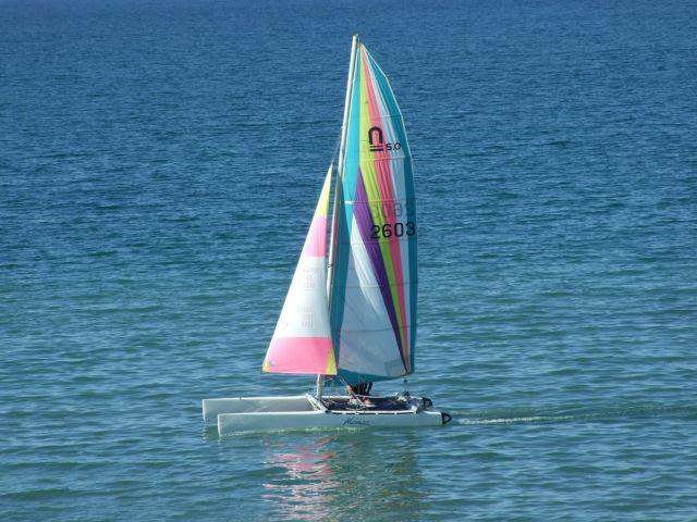 Corsi di Catamarano Isola d'Elba